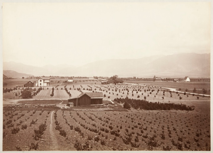 1 CEW, Indiana Colony, Los Angeles County, ca. 1877-80, CSL 1500