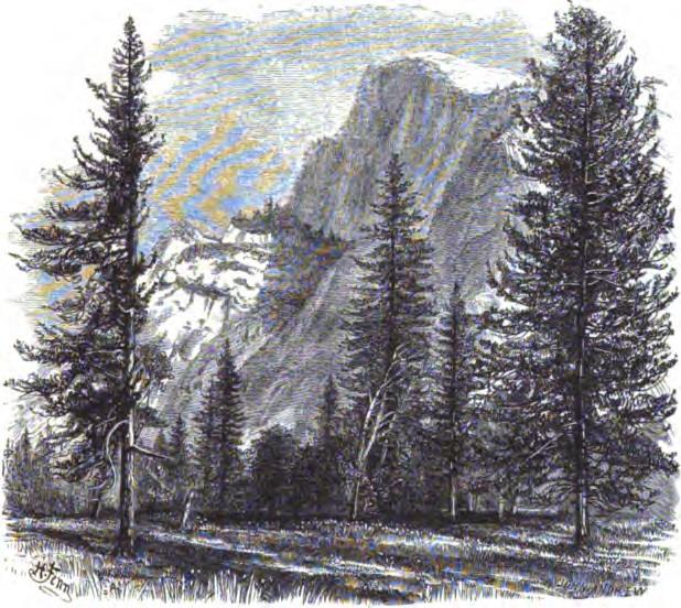 1 Engraving made from CEW of Half Dome reproduced in CGS Geology, Vol. 1, 1865