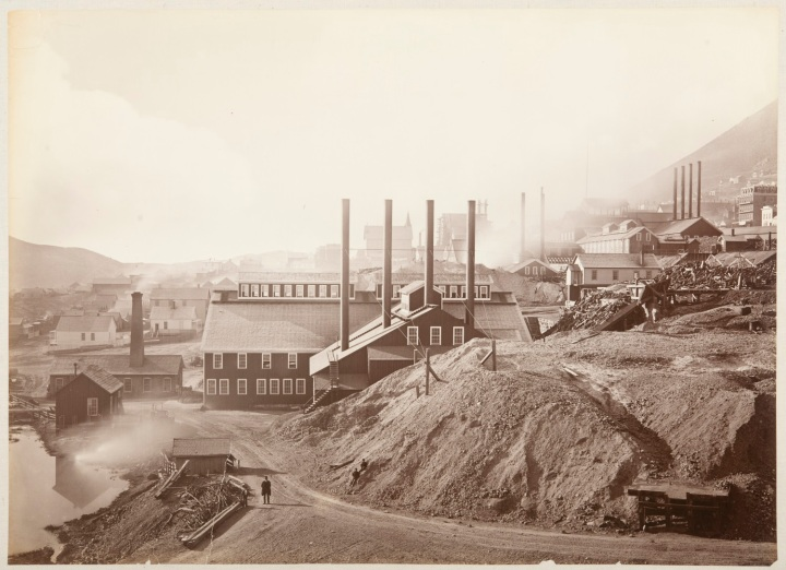 12 CEW, Consolidated Virginia and California Mining Co., Storey County, Nev., 1876, CSL 1500
