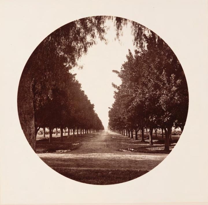12 CEW, Sunny Slope, ca. 1880, HEH.jpg