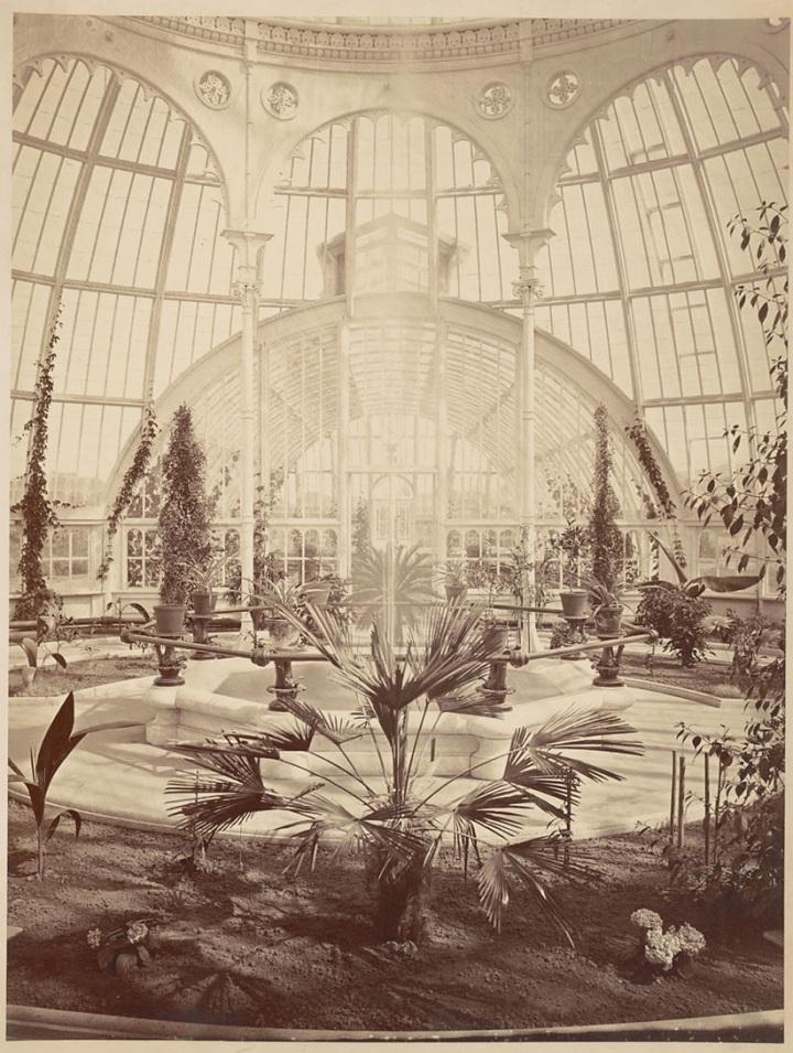 12c, CEW, Interior of Millbrae ConservatoryDO Mills conservatory interior, Bancroft, ca 1856-76, BANC