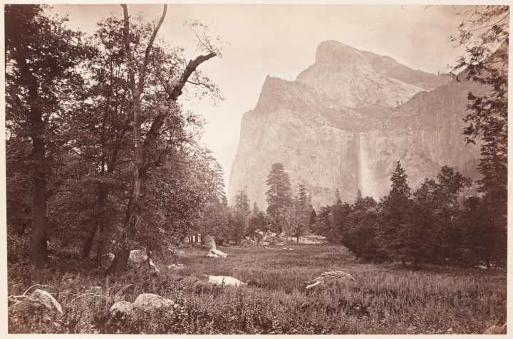 15 CEW, Bridalveil Fall in Springtime, Yosemite, 1865-66, CSL 1500