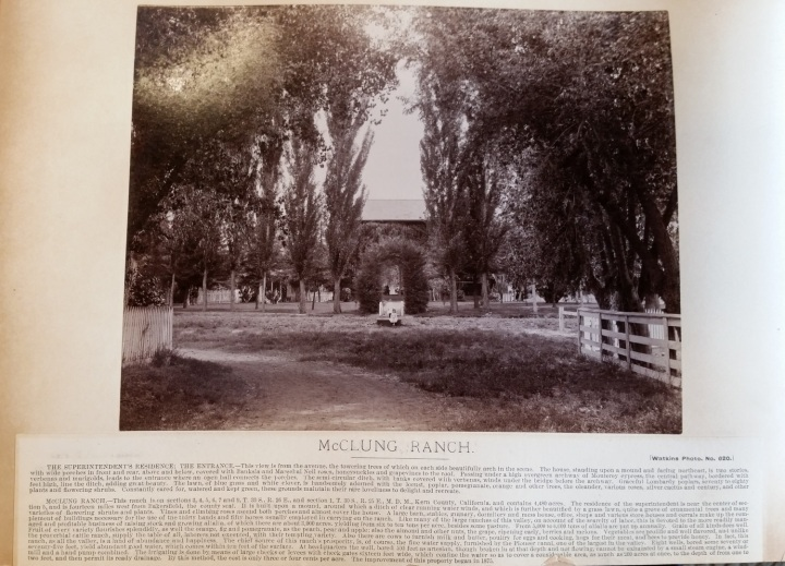 15 CEW, McClung Ranch, ca. 1887-88, unidentified collex 1500