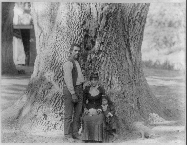 2 CEW, Family and Oak Tree, Tejon Ranch, ca. 1887-89, LOC 1500.jpg