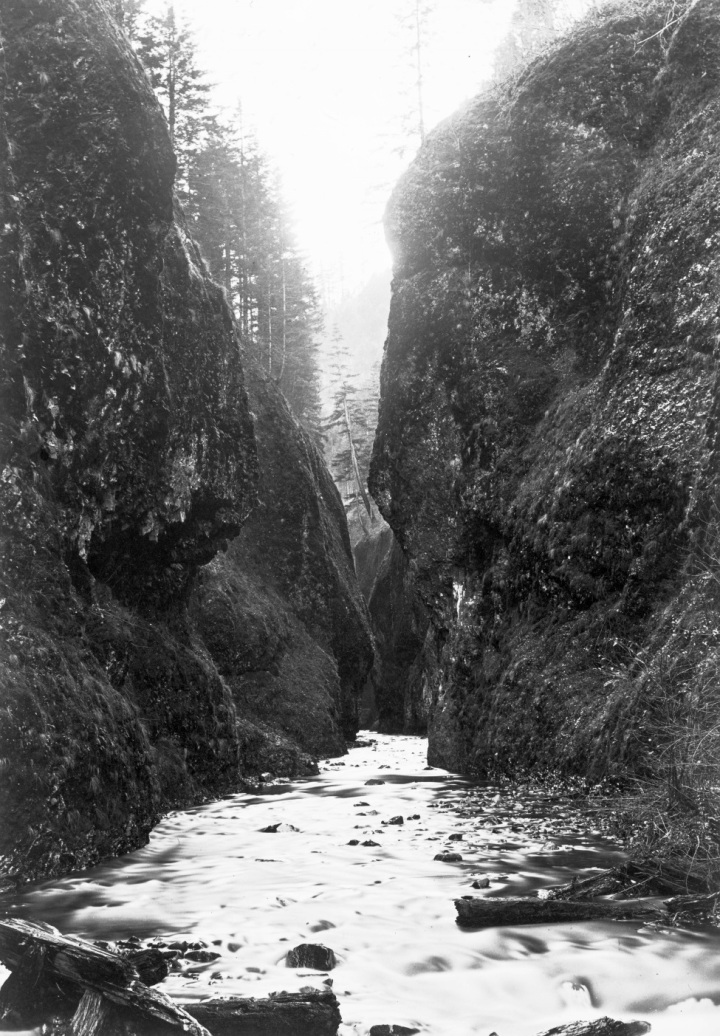 2 CEW, View Up the Oneonta Gorge, Cascades, , ca. 1882-83, OHS 975