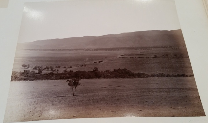 4 CEW View of Paddocks, ca. 1887-89. 1500.jpg