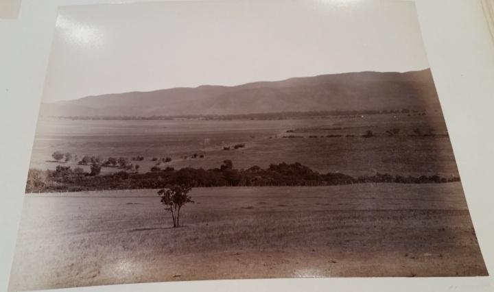 4 CEW View of Paddocks, ca. 1887-89. 1500.jpg