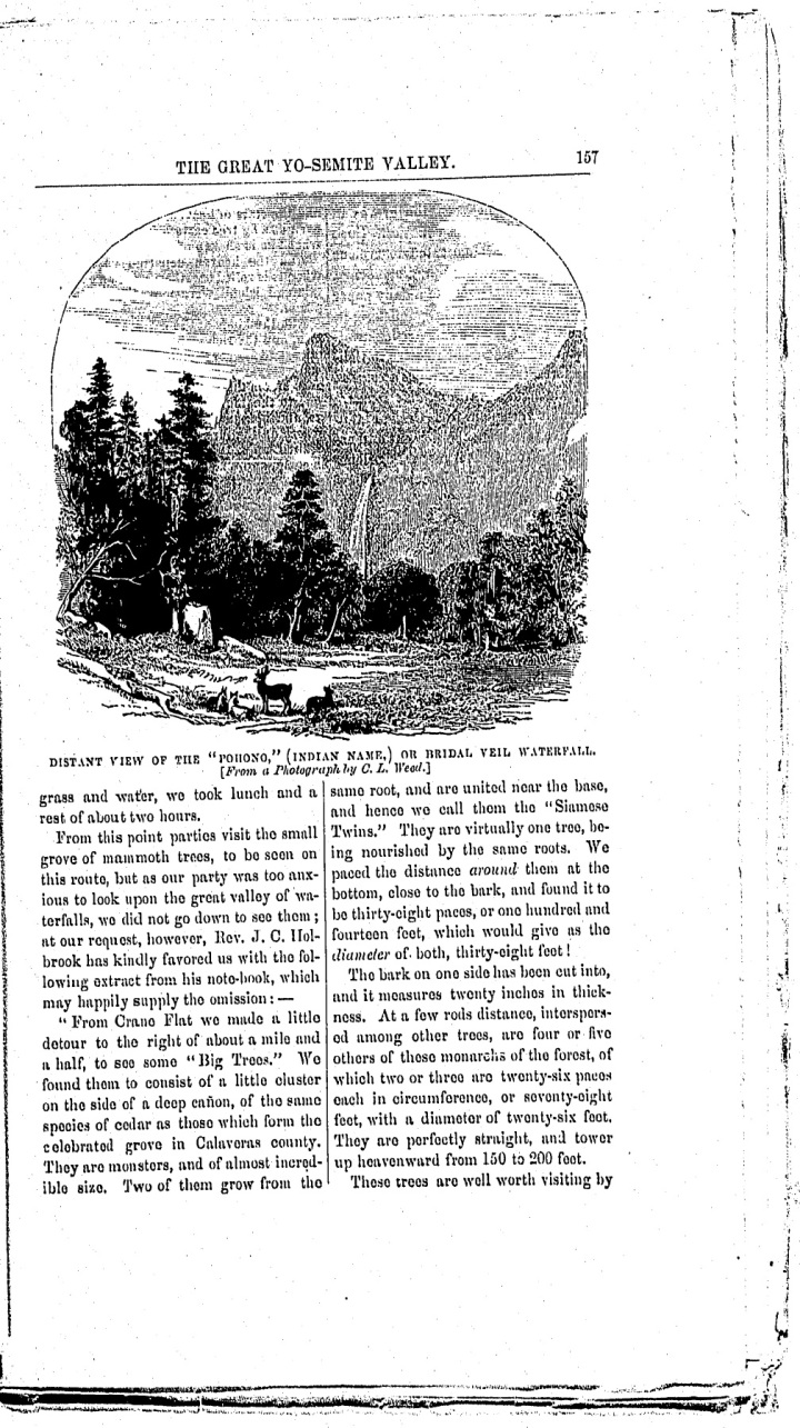 4 Weed in Hutchings (2), Oct. 1859