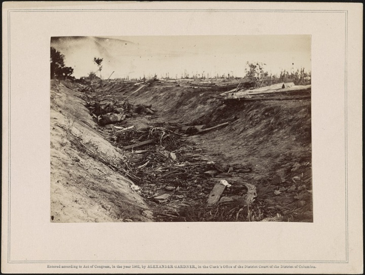 5 Alexander Gardner, View in the ditch, on the right wing, after the Battle of Antietam [Bloody Lane], 1862, LOC