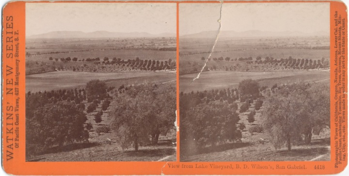 5 CEW, View from Lake Vineyard, B.D. Wilson's Property, ca. 1877-80, CSL 1500.jpg