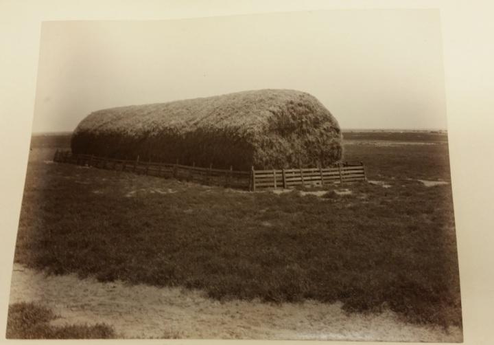 7a CEW, Jackson Ranch, 1887-89, KCM