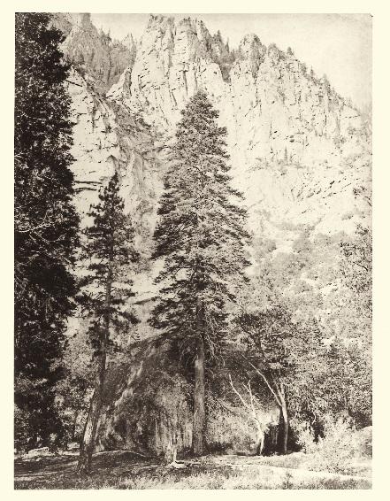 8 CEW Amabilis, Yosemite, 1865-66, TBD