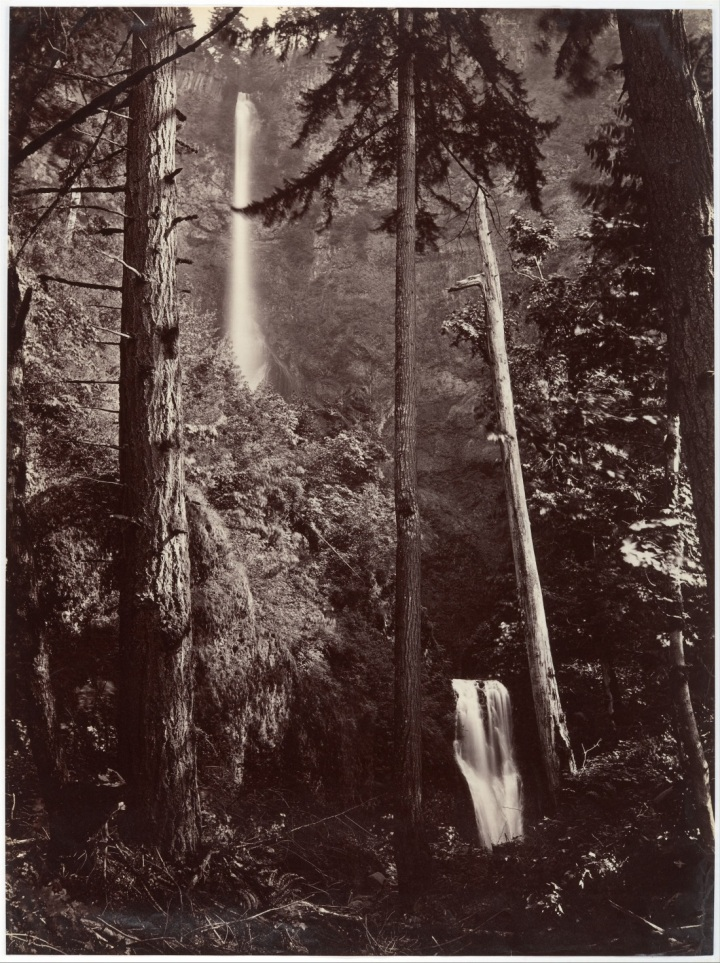 9 CEW, Multnomah Falls, Side View, Oregon, 1867, Met 1100