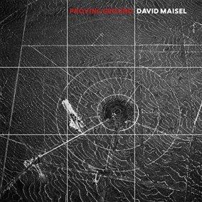 David Maisel.jpg